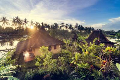 Dragonfly Village – UBUD